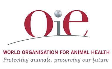 Implementation of OIE recommendations